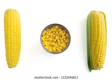 Sweet Corn and canned Maize on white Background