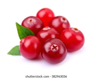 Sweet cranberries with leafs close up on white