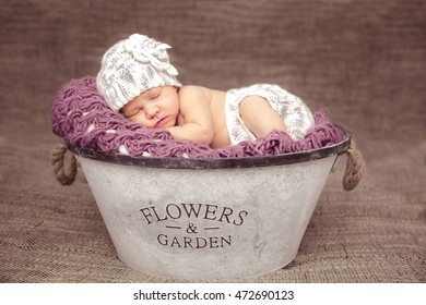 Sweet dream newborn baby in a big basket