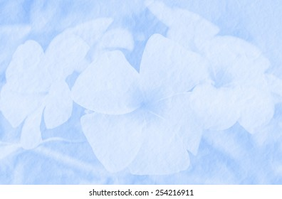 Sweet flower on mulberry paper made with pastel tones for spa