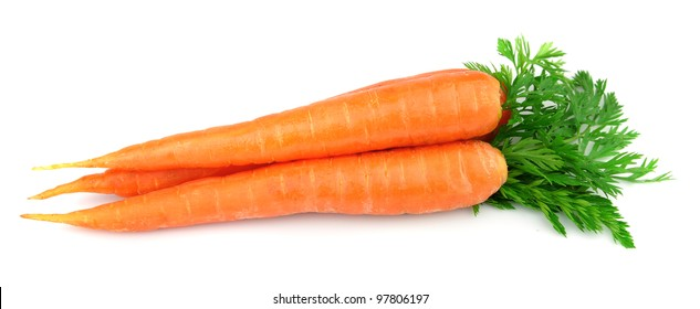 Sweet and freash carrots with leafs on white