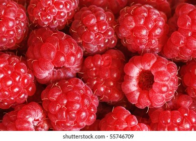 sweet fresh raspberry close up