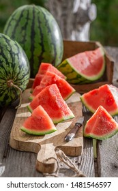 Sweet and fresh watermelon in sunny garden