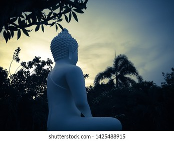 Sweet Garden With White Buddha Meditating Statue In The Evening Sunshine At Buddhist Temple, Brahmavihara Arama Monastery, North Bali, Indonesia