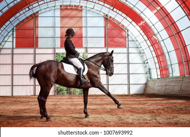 A Sweet Girl Jockey Rides Horse In Covered Arena Training Of The Spanish