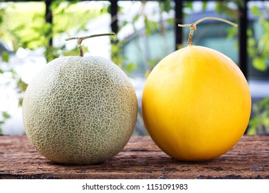 sweet green melon and yellow melon on wooden table.