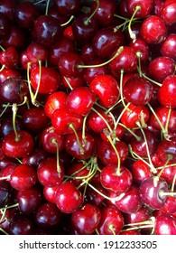 sweet harvest of thick-skinned cherries