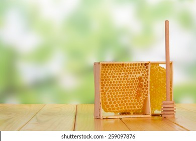 Sweet honey with honey dipper on green blurred background