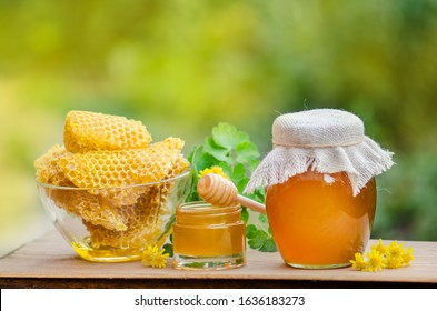 Sweet honey, pieces of combs and honey dipper on blurred garden background. Honey dripping from honey dipper