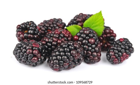 Sweet and juice blackberry with leafs close up