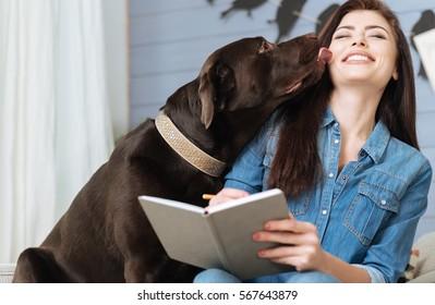 Sweet Labrador giving his mistress a kiss