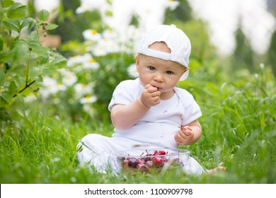 Sweet little child, baby boy, eating cherries in garden, enjoying tasty fruit, getting dirty
