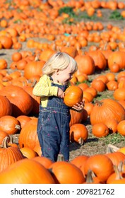 Sweet little girl on the pumpkin patch