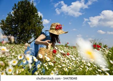 Sweet little girl pick wild flowers