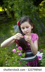 Sweet little girl picks oil aroma roses in the garden