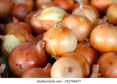 Sweet Onion from Armish Farm
