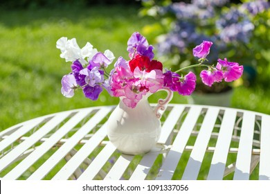 Sweet pea flowers in a white vase on a white metal, garden table in the garden on a sunny day.