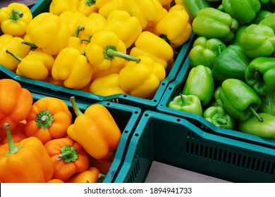 Sweet peppers of different colors are in plastic boxes. Wholesale and retail trade in fruits and vegetables. Close-up