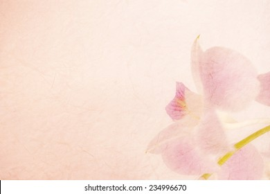 sweet pink orchids on mulberry paper texture for background
