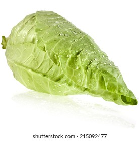 Sweet pointed cabbage isolated on white background