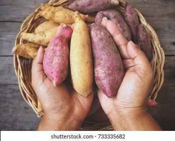 Sweet potato on hands