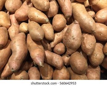 Sweet Potato Pile