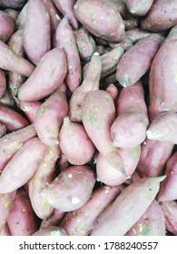 sweet potatoes called ubi at indonesia