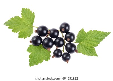 Sweet shiny black currant berries with leaves, isolated on white. Close-up
