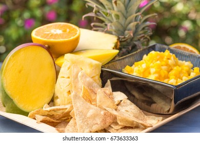 A sweet snack of pineapple, mango, orange and papaya salsa, served with cinnamon tortilla chips