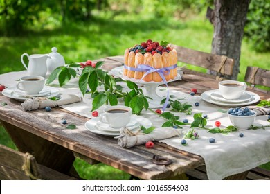 Sweet summer dessert with raspberries and blueberries in garden