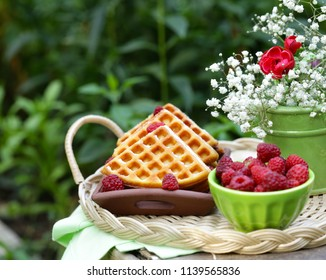 sweet waffles with berries for dessert, outdoor picnic