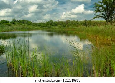 Sweet Water Marsh in Upstate New York