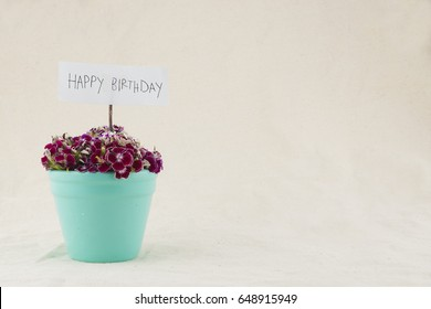 Sweet william flowers bouquet in pastel green pot with happy birthday card with copy space