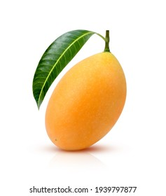 Sweet yellow ripe Marian plum ( Mayongchid, Maprang, Plum Mango ) with green leaf isolated on white background.
