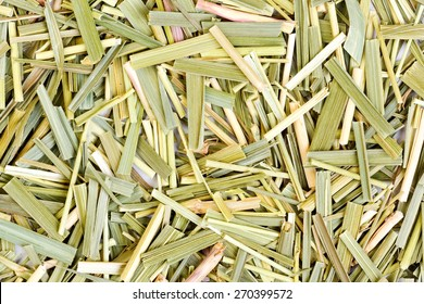 Sweetgrass for medical use. Close-up photo.