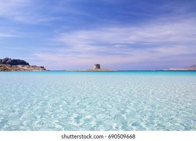 A swim in the clear water of Pelosa beach, in Sardinia, Italy.