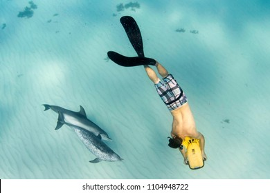 Swimmer with scooter swimming with dolphins