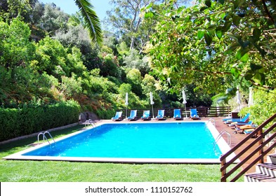 swimming pool with blue water near the garden