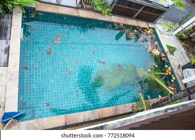 Leaf Floating On Water Images Stock Photos Amp Vectors
