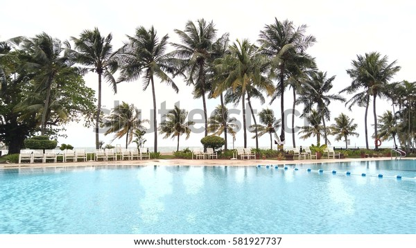swimming pool with coconut tree and white chair
