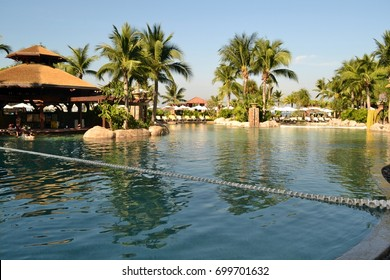 Swimming pool, palm trees. The city of Pattaya. Thailand