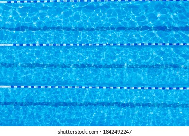 Swimming pool with racing lane dividers, top view