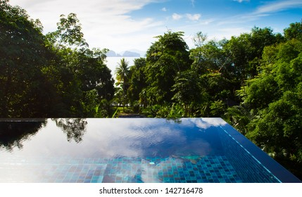 swimming pool with tropical forest view
