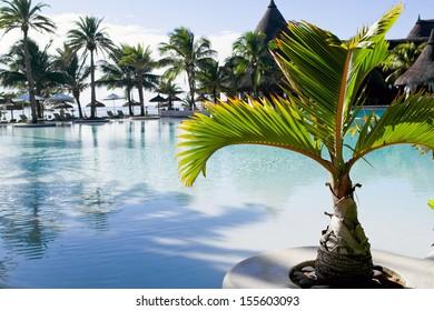 Swimming pool at tropical resort in Mauritius