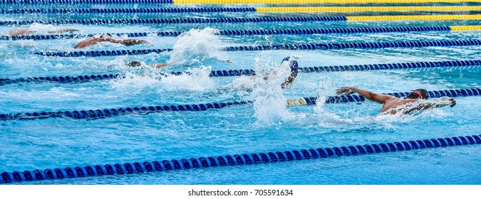 Swimming at pool, Water sport concept