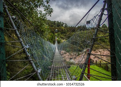Swing bridge over Buller river gorge, West Coast, New Zealand