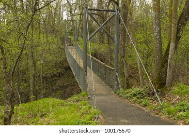 Swing Bridge In Woods