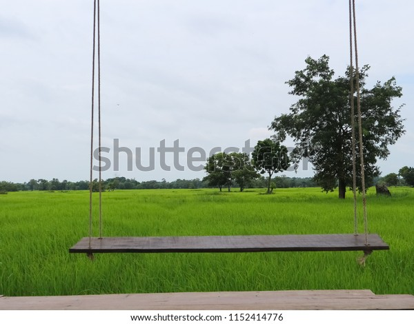 A swing with the field.
