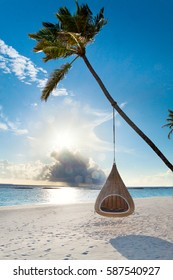 Swing hanging on coconut palm at tropical beach on Maldives island