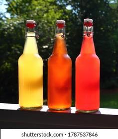 Swing Top Bottles of Home Brewed Kombucha